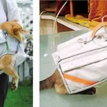 pet-evacuation-jacket-japan