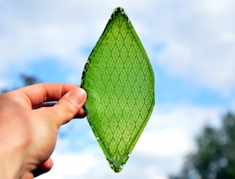 RCA graduate develops an artificial leaf that's capable of producing oxygen