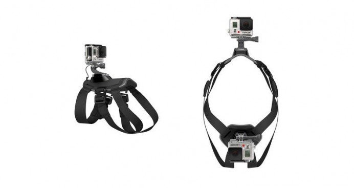 fetch-dog-harness-3-692x367