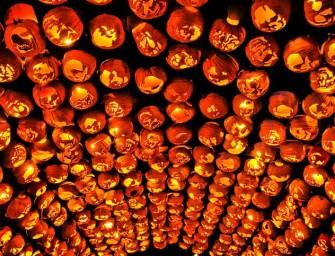 Great Jack O' Lantern Blaze at Hudson Valley will have 5,000 hand carved Pumpkins